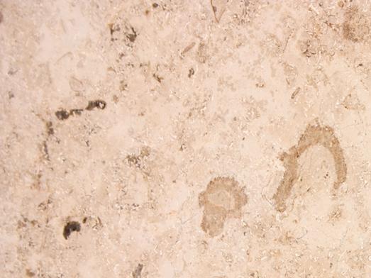 Eurostone Piedra jura Beige